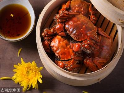 """""""蟹斗"""" 哪个流派最合你口味?"""